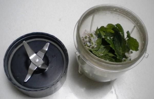 Blend Mint